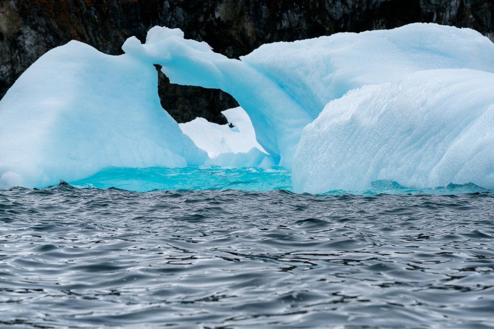 Antarctica00215-44.jpg