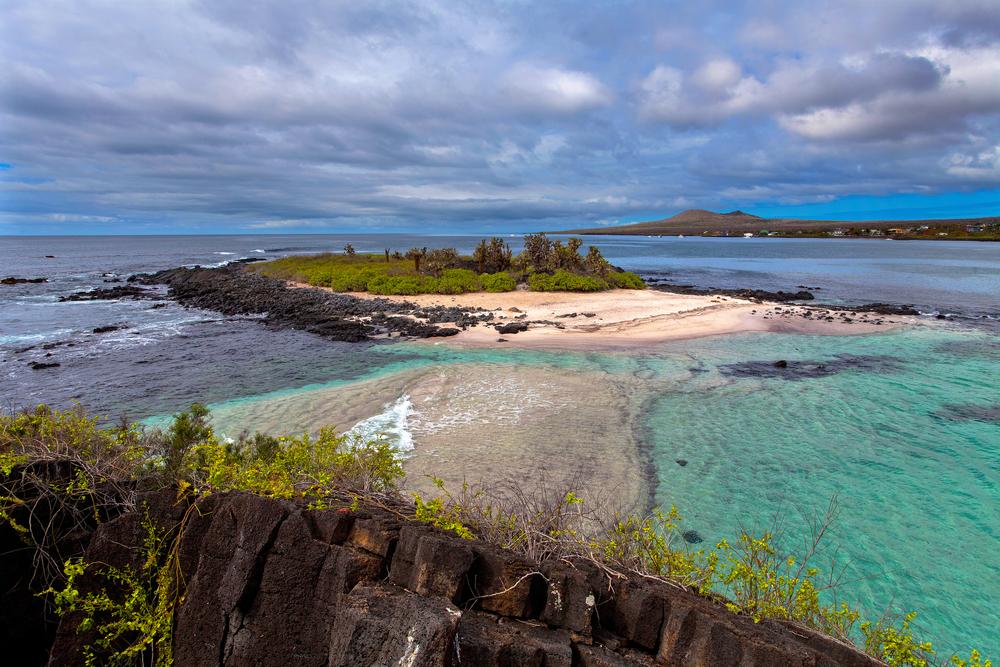 Floreana Island 2