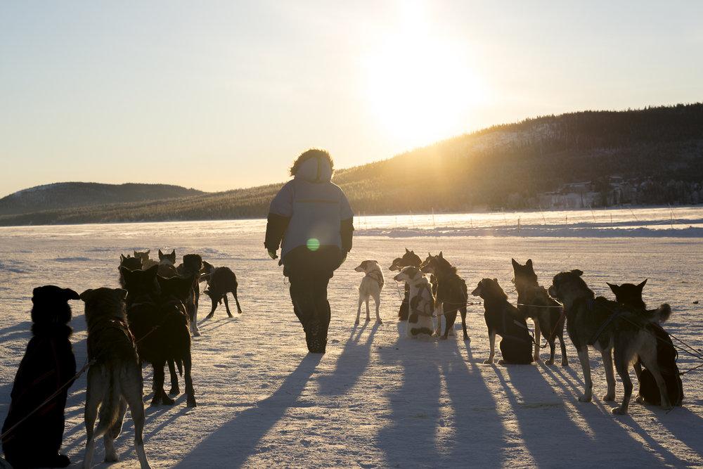 Swedish Lapland - Mark Cunich