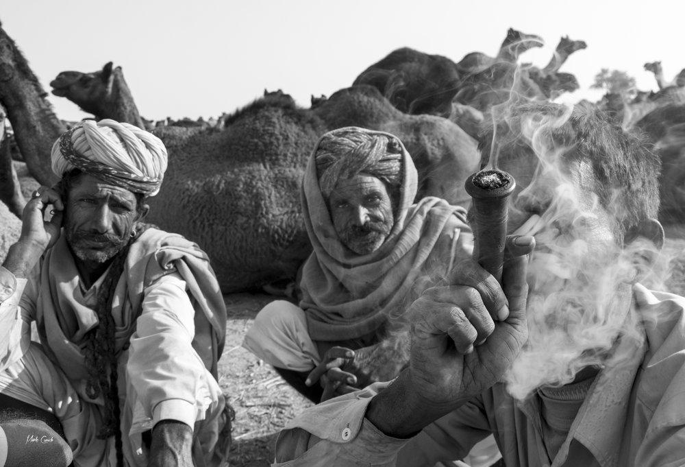 Rajasthan - Mark Cunich