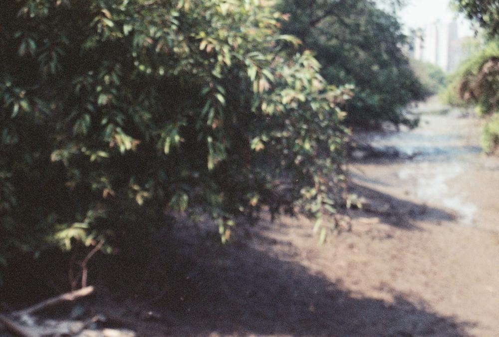 r001-036.jpg