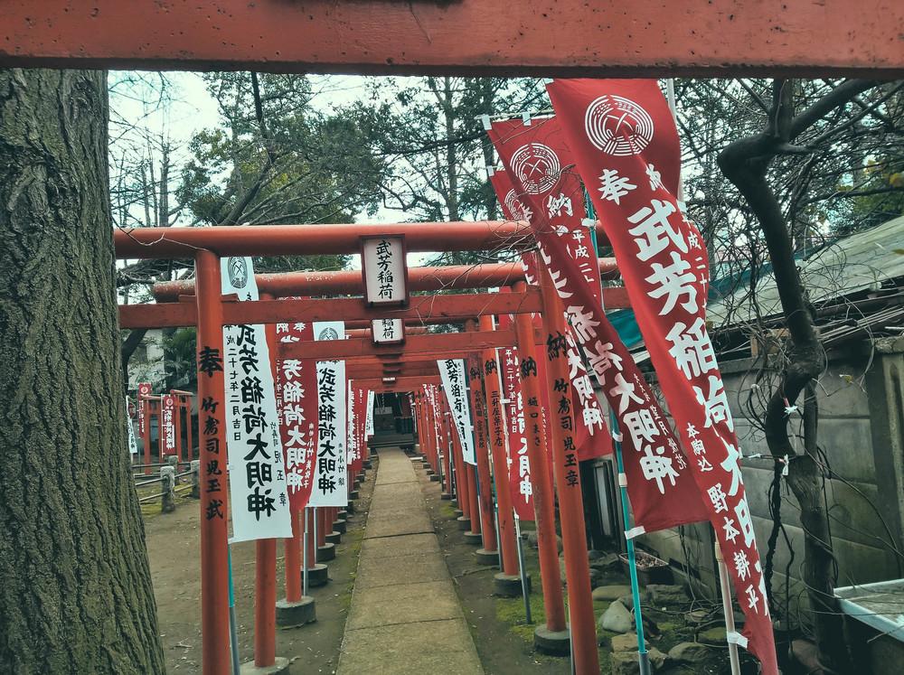 Akira_20150315_13_47_21_Rich.jpg