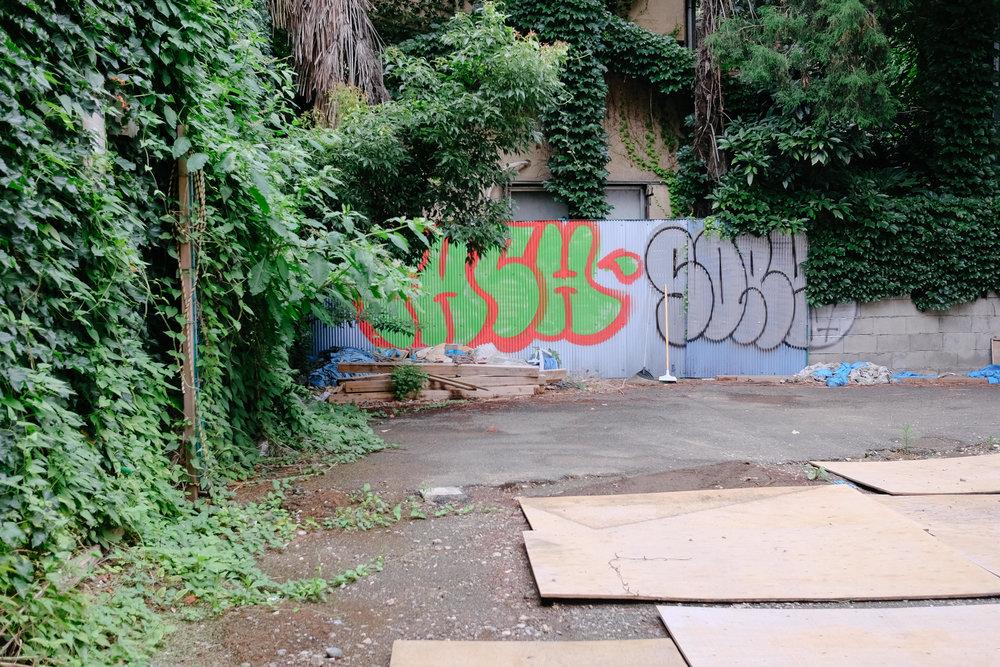DSCF8705.jpg