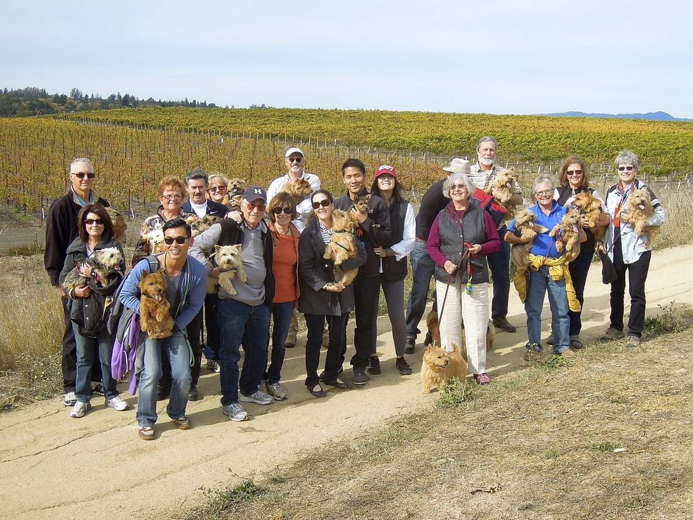 Balletto Winery  Walkers 2013.jpg
