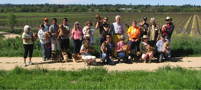 2015 WALK AT BALLETTO WINERY AND LUGUNA SANTA ROSA TRAIL