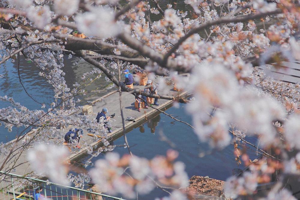 Sprazzi_Professional_Portrait_Photo_Tokyo_Joey_Resize_2.jpg