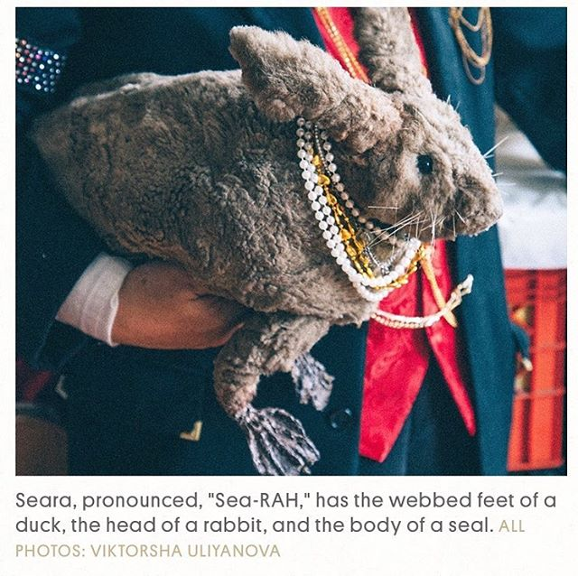 A recent project I worked on is up now on @atlasobscura covering a mutant taxidermy artist who repurposes his own toenails, faux fur and pig bones , Takeshi Yamada . Words by Zoe Bernard , photos by me .  Link in bio 💫 . . . #takeshiyamada #taxidermy