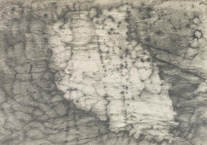 """""""Flesh and Stone"""" (III) 2009"""