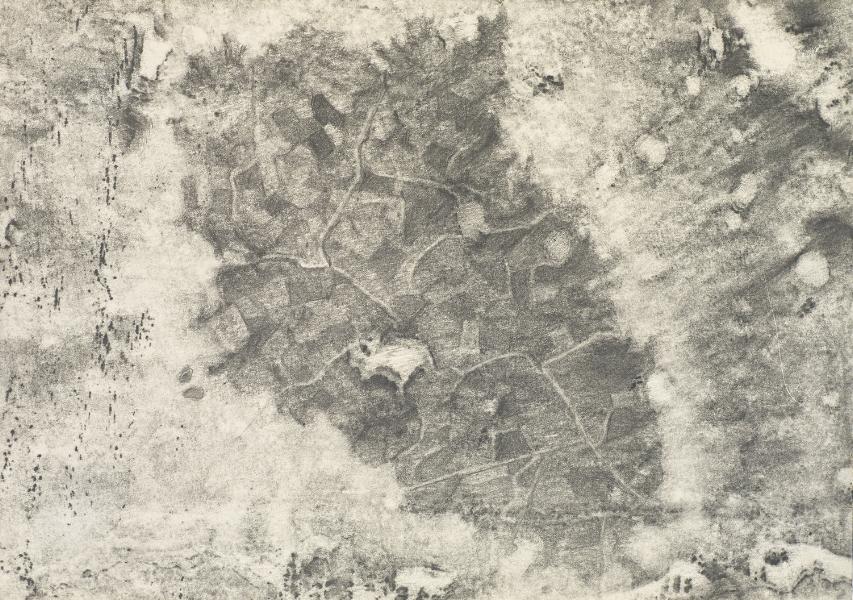 """""""Flesh and Stone"""" (V)  2009"""