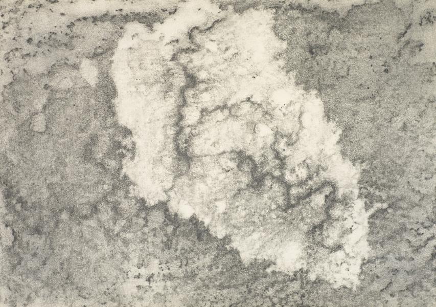 """Flesh and Stone"" (VIII) 2009"
