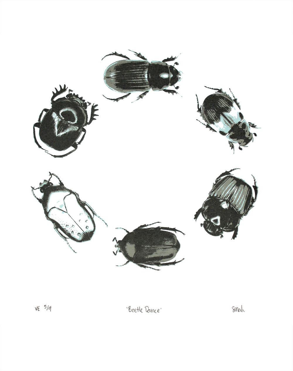 beetledance-lght_white copy.jpg