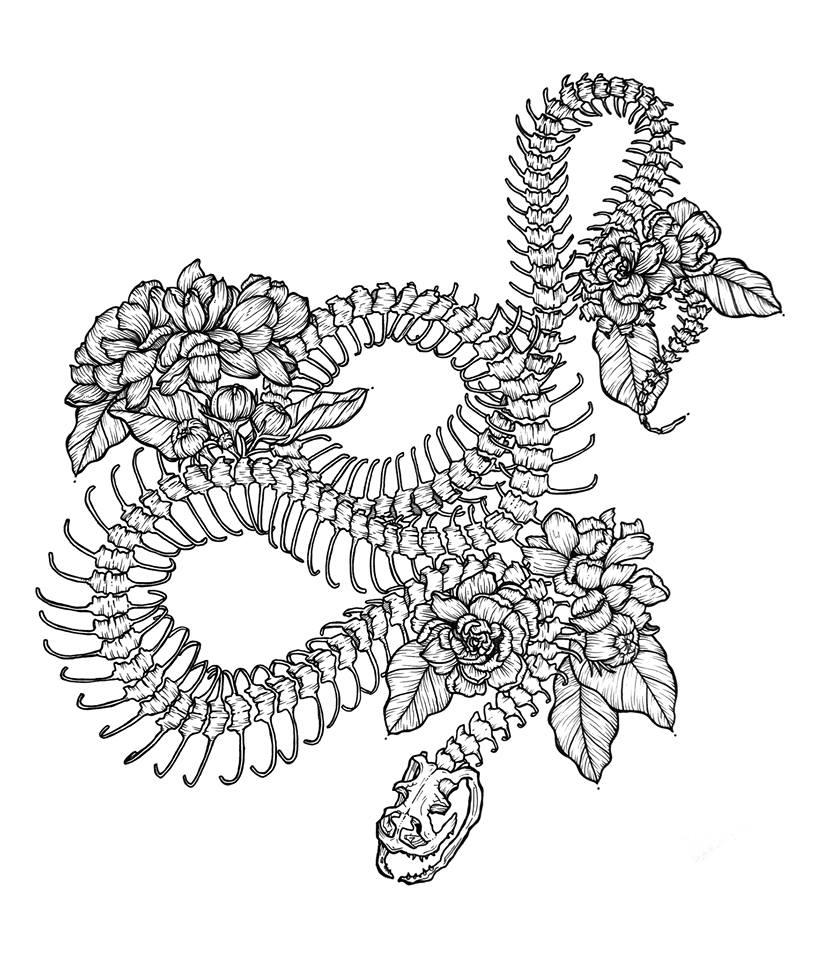 snake spine.jpg