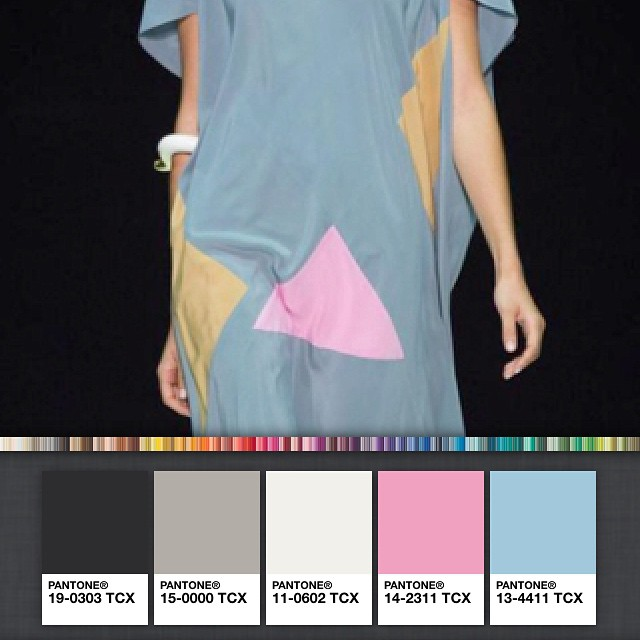 I love creating colour palettes on my @pantone app!! this was created compliments of Angelos Bratis SS2015. Perfect colours for an Australian Summer 2016!