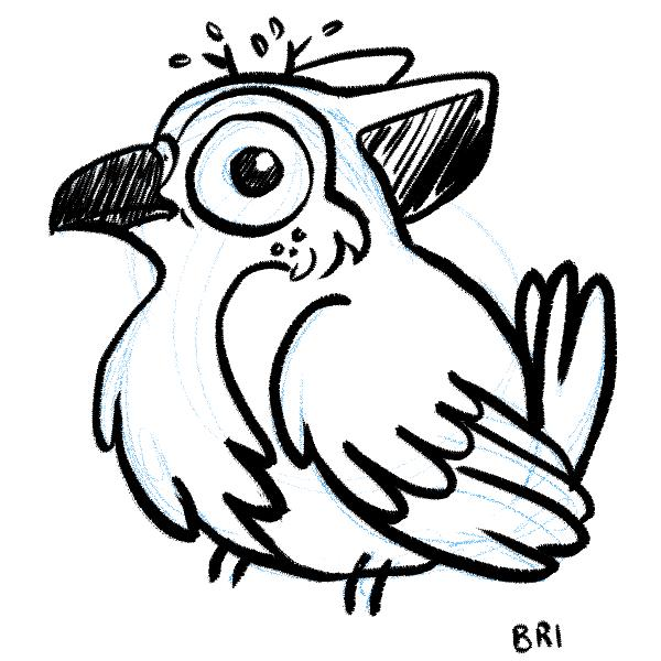 The first birb, @BriMercedes