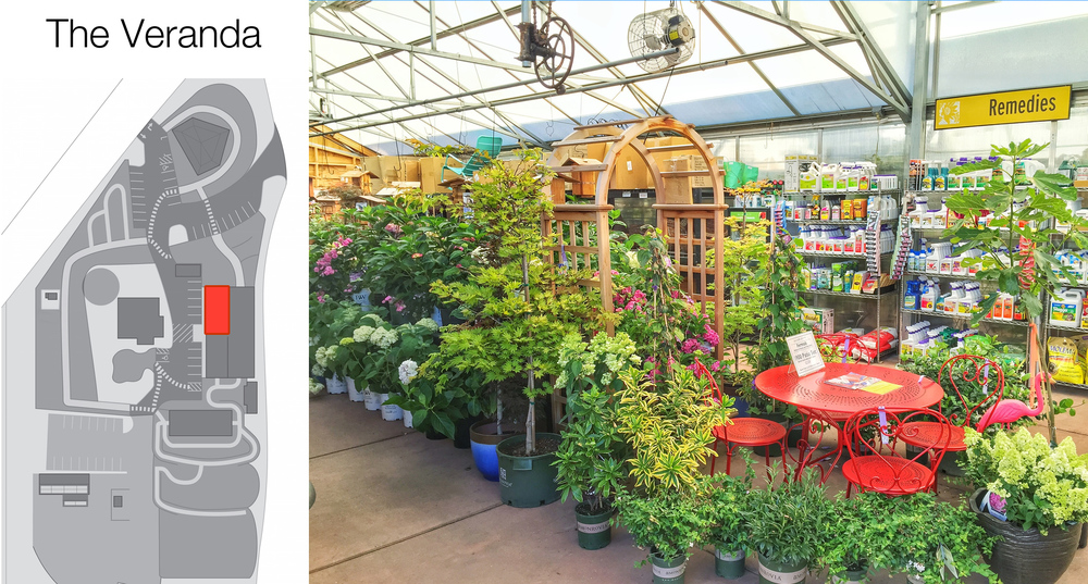 The north half of the Veranda includes plant & insect remedies,more shade plants, lightweight pots.andpottery accessories.