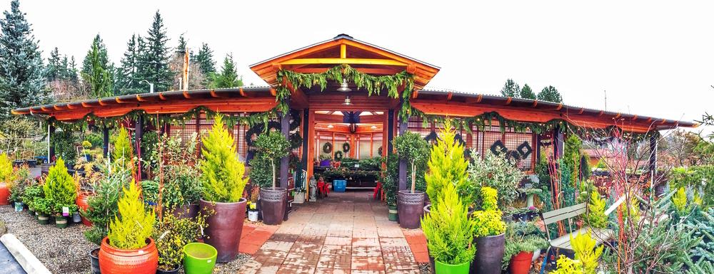 Cornell Farm Holiday Greens Florist Shop.jpg