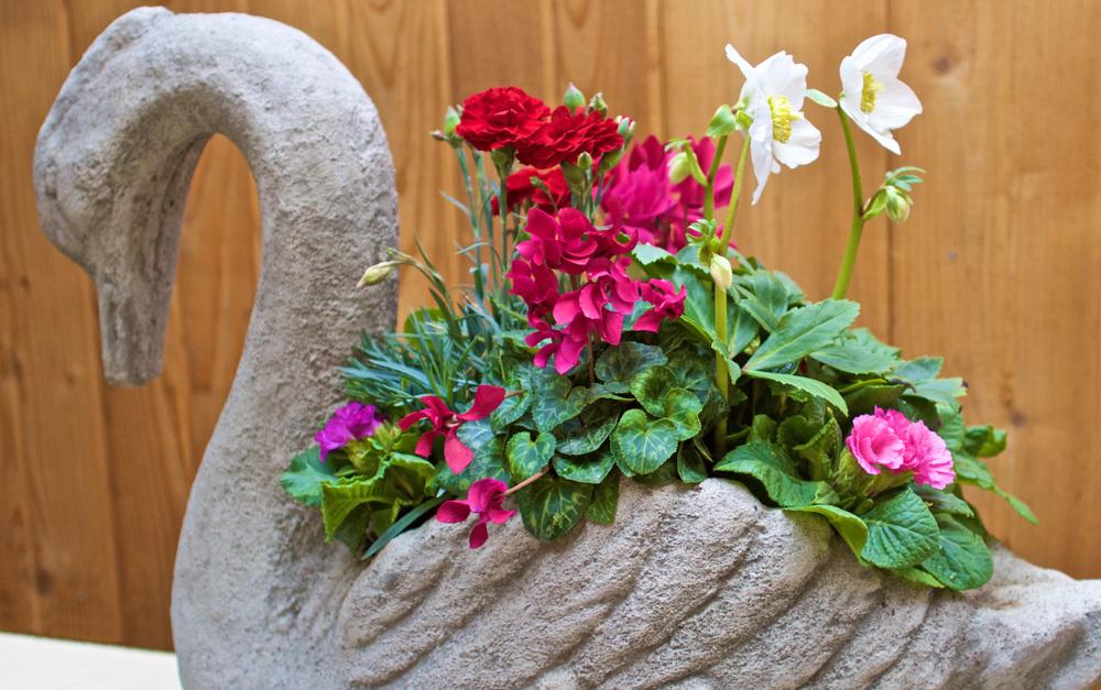 Outdoor Planter 2.jpg