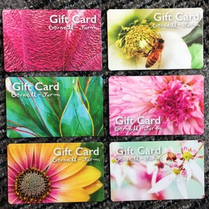 Gift cards cornell farm nursery gift card mightylinksfo Images