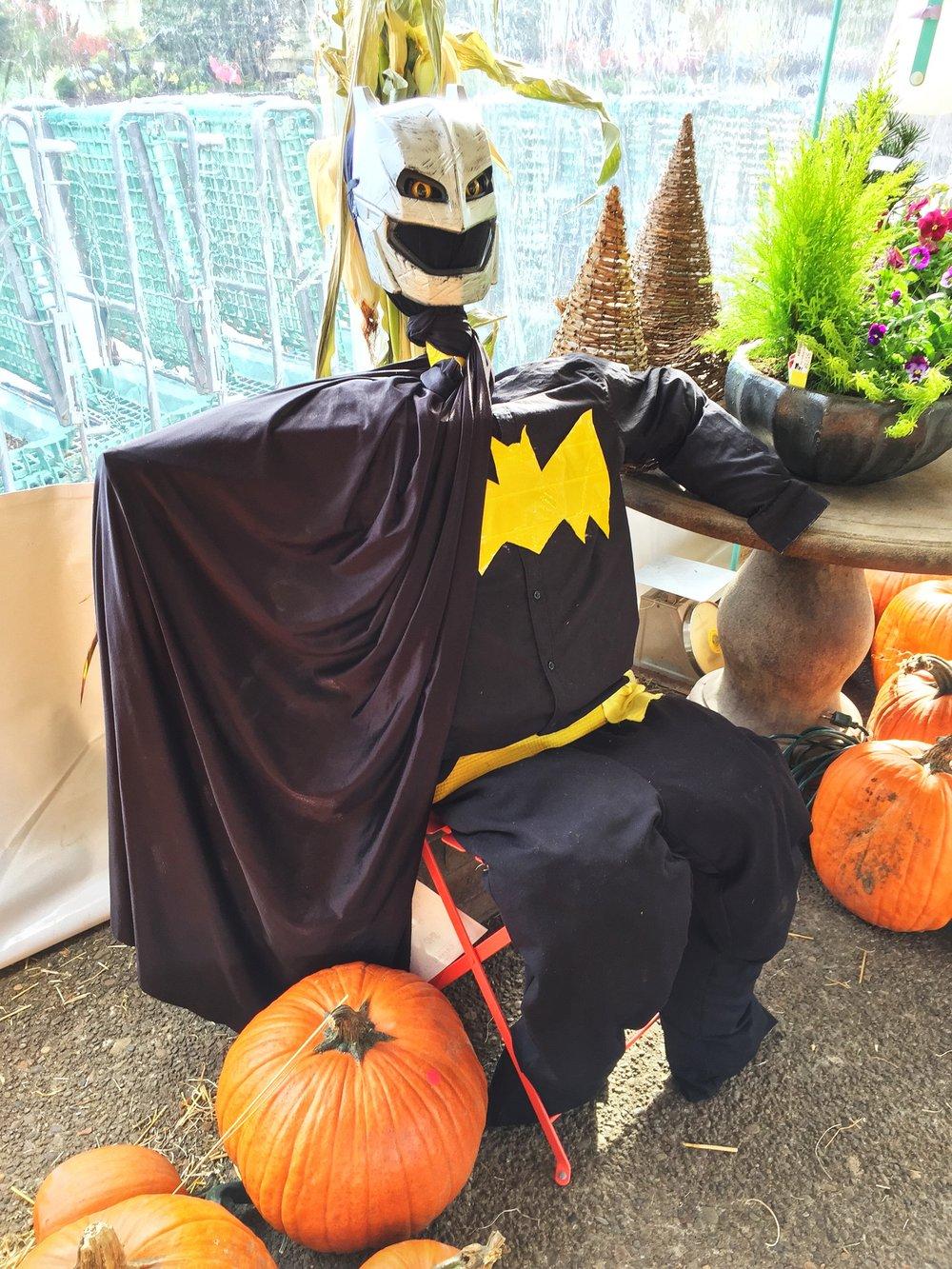 Bat Creep