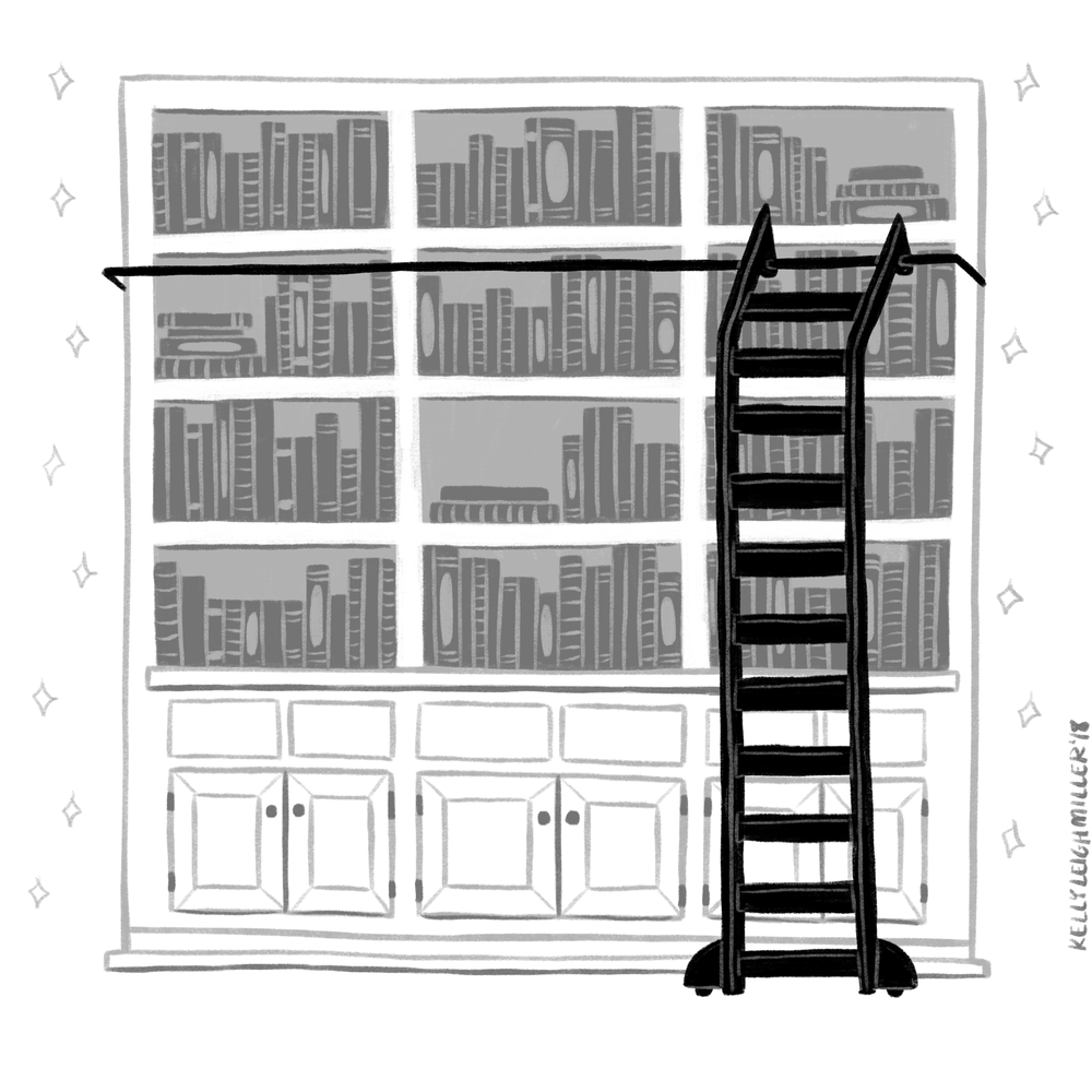 Very_Pretty_Big_Bookcases.png