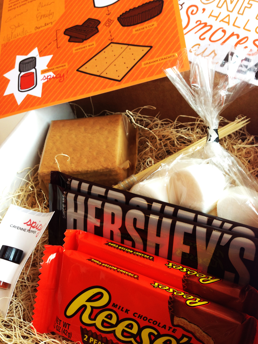 Reactor S'mores Kit | Client Appreciation Mailer