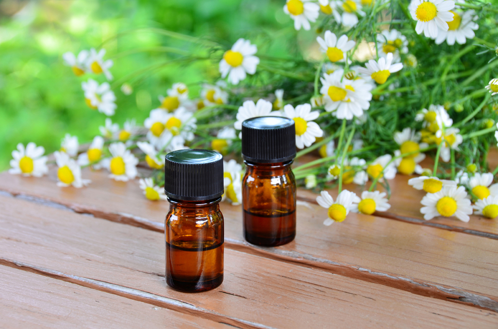 Chamomile flower oil