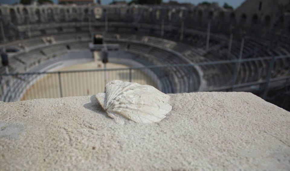 Inside Arles Amphitheatre. France. 2013.