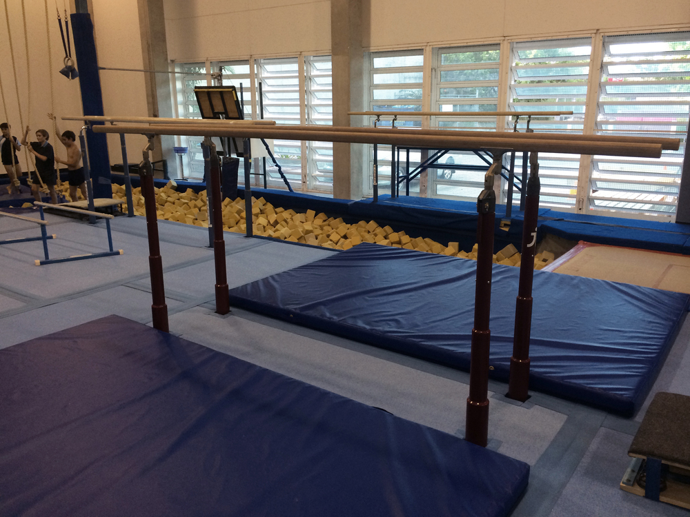 Parallel bars and pit