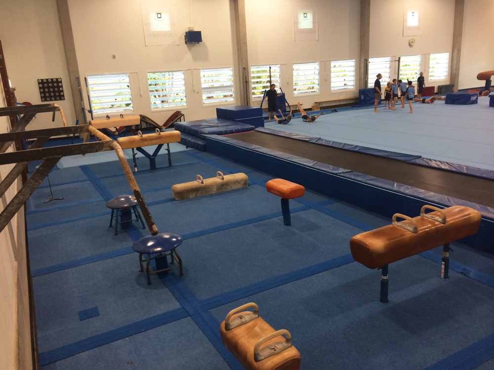 Pommel horse and tumble track