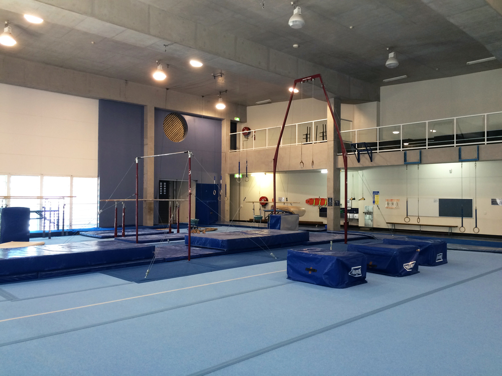 High bar and Rings canopy