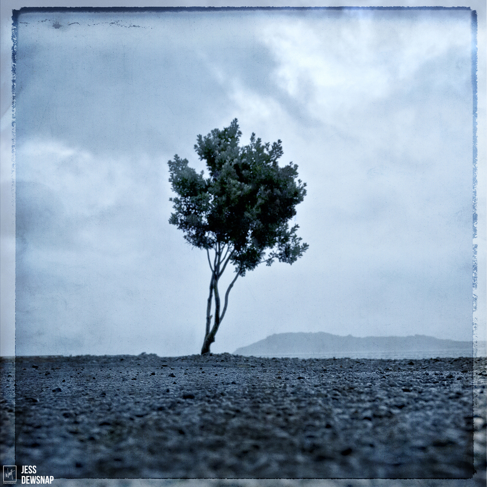 Desolate landscape -Jess Dewsnap - $795.00