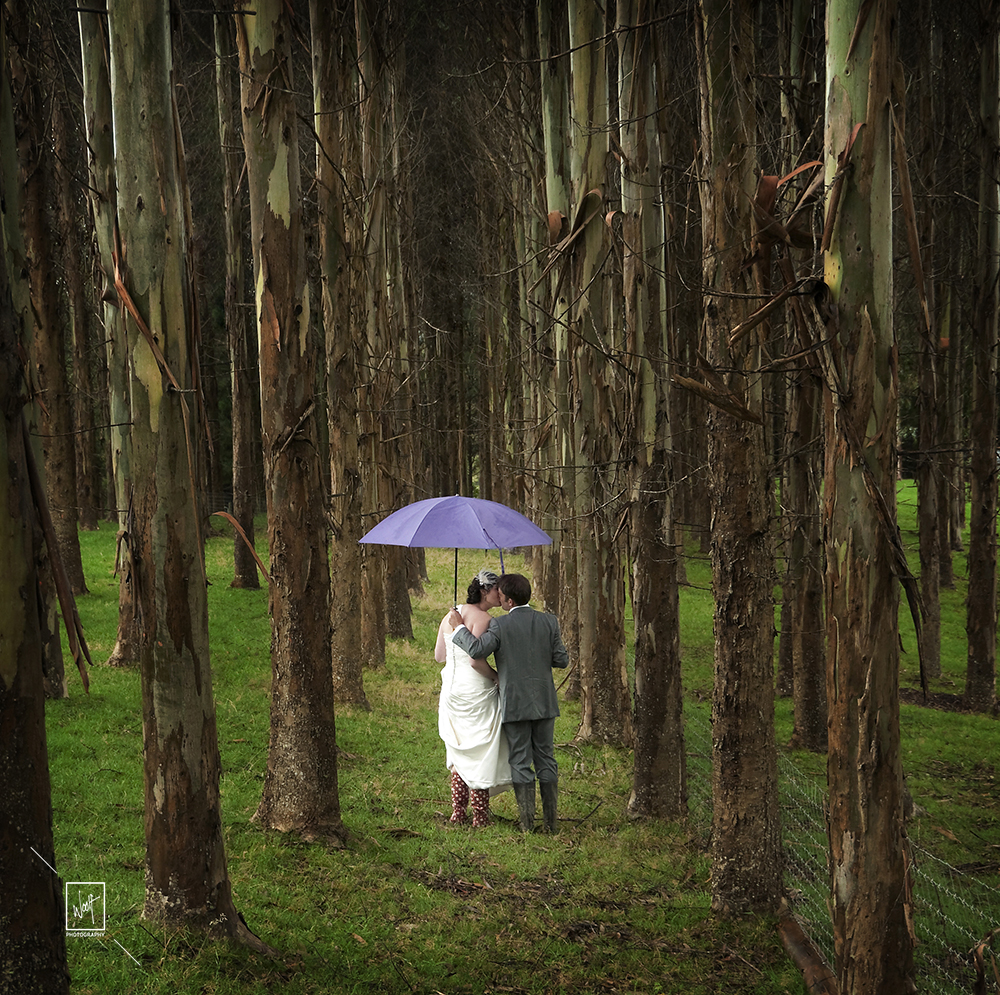 Couple in the woods after wedding