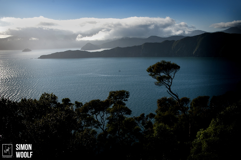 From Island.jpg