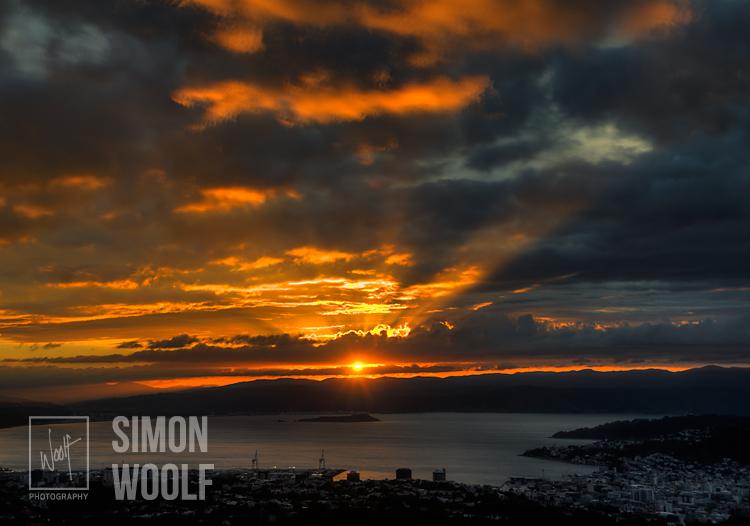 # 3135, Autumn Morn Wellington