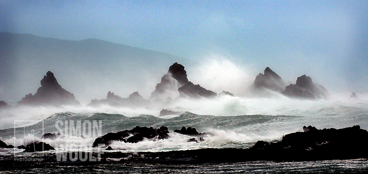 #3139, Island bay Storm