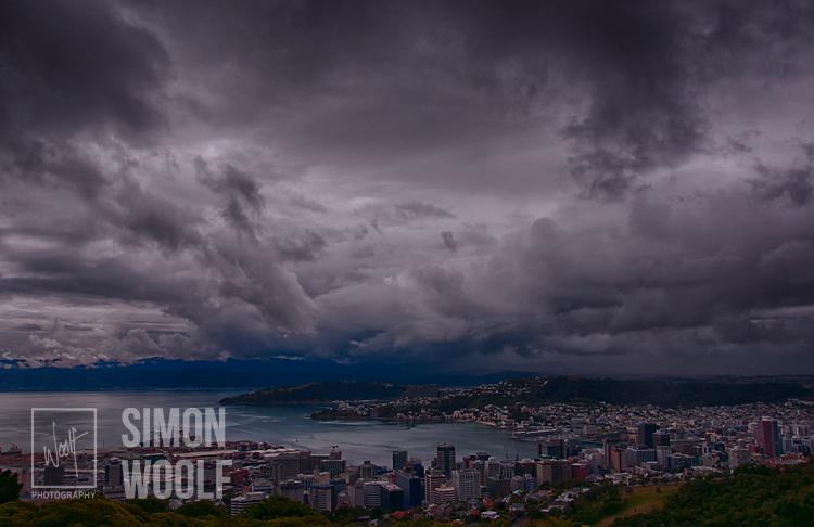 #3151, Wellington Storm