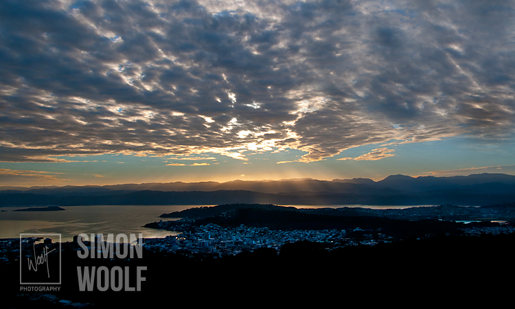 #3198, Wellington Dawn      Big Sky 2