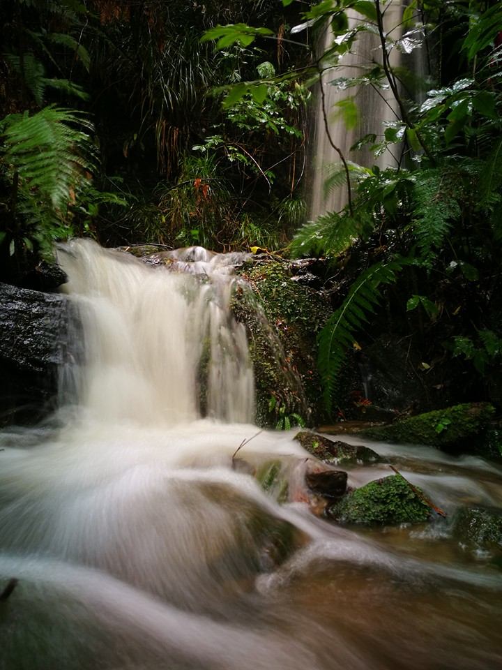 BOMC-May6Waterfall.jpg