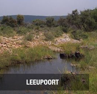 <p><strong>LEEUPOORT</strong>1 169 hectare farm. <br>PRICE -  R24 500 000PRICE <a href=/new-page>More →</a></p>