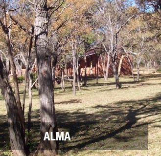 <p><strong>ALMA</strong>186 hectare Farm in Loubad District. <br>PRICE - R5.1M <a href=/alma-farm>More →</a></p>