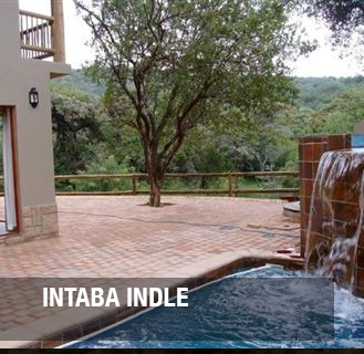 <p><strong>Intaba Indle</strong> - Fractional ownership<a href=/-intaba-1-1>More →</a></p>