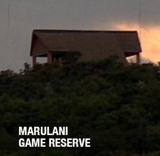 <p><strong>Marulani</strong> - Fractional ownership<a href=/marulani>More →</a></p>