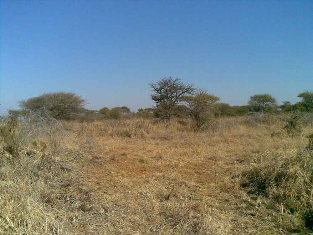 Ref: PT0014 |  Beautiful bushveld property! Undeveloped 5 ha small holding. 11 Km from Bela Bela, partially fenced, no electricity. Yours to develop as you wish! PRICE: R550 000