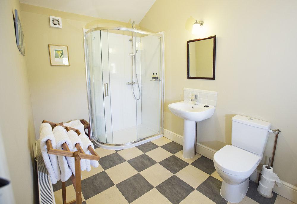 Hergest view en-suite shower