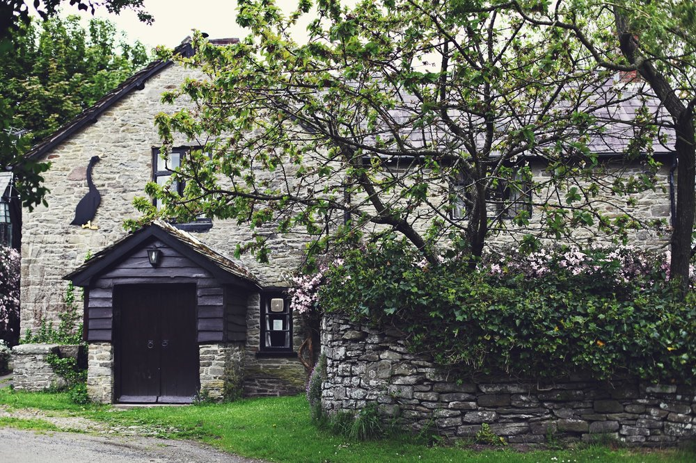The village pub - The Swan