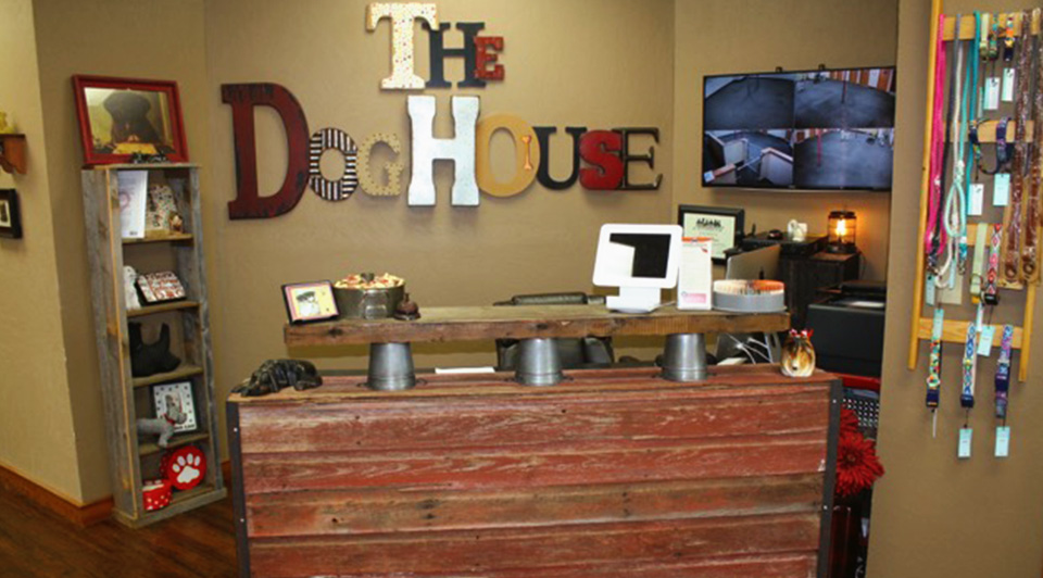 The Dog House OKC Dog Daycare Reception