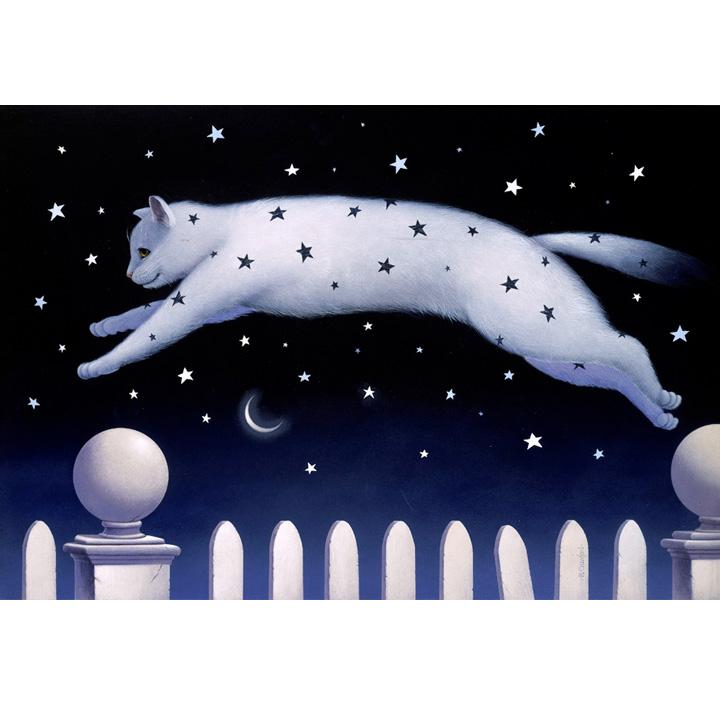 starcat.jpg