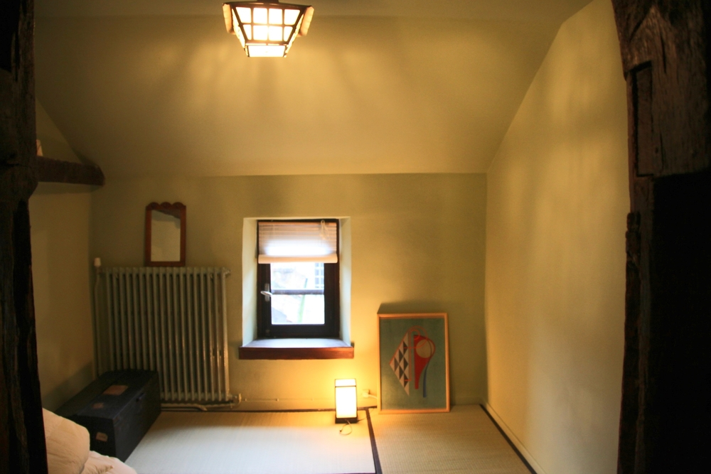 ZEBRE ROOM 2.JPG