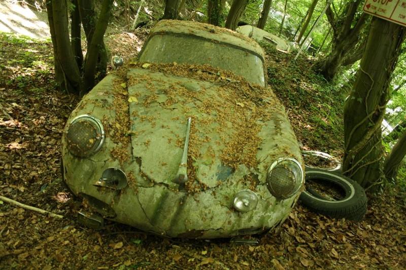 supercar4.jpg
