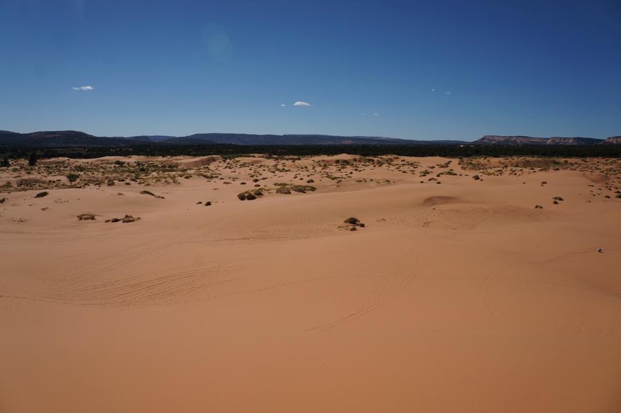 Sand-dunes-5.jpg